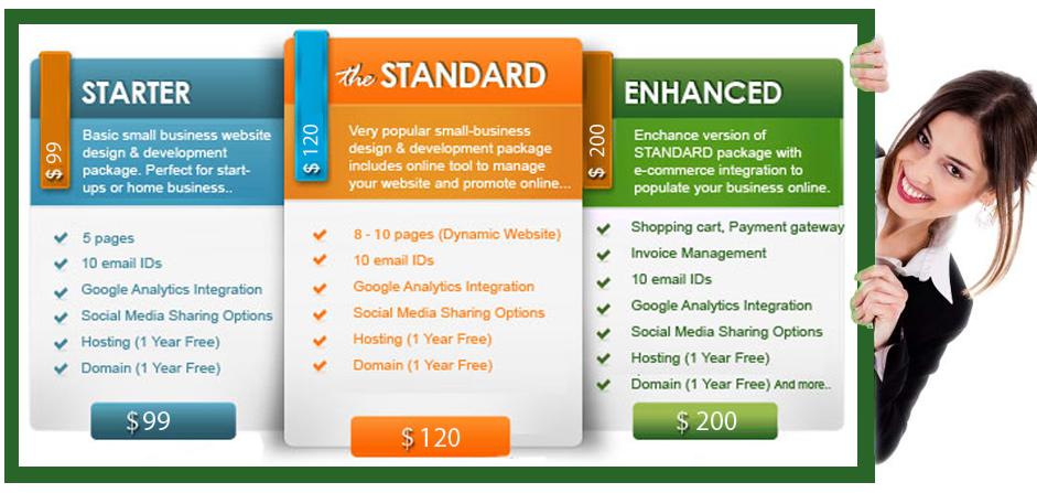 web design price list ,website design cost in india ...
