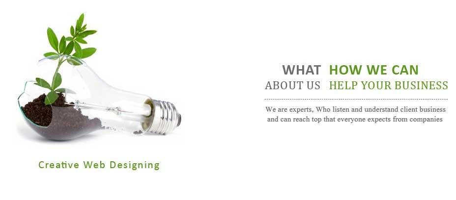 Website design solution delhi, Affordable Website Design And